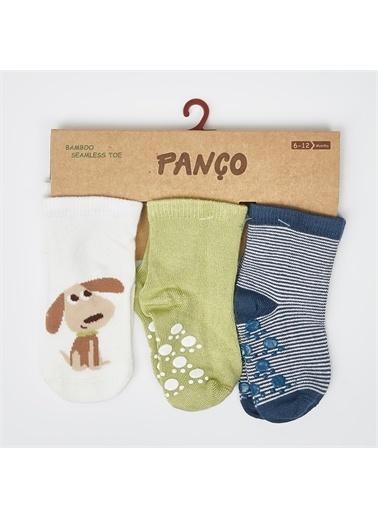Panço 0-3 Yaş Erkek 3 lü Çorap 2012BB11017 Renksiz